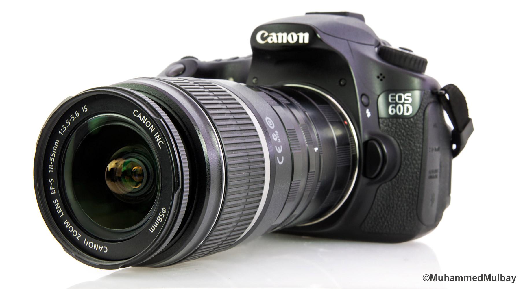 makro-fotografcilik-7-