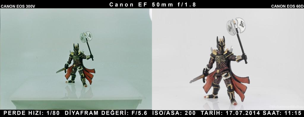 canon-60D-kiyasla-canon-300v-7-